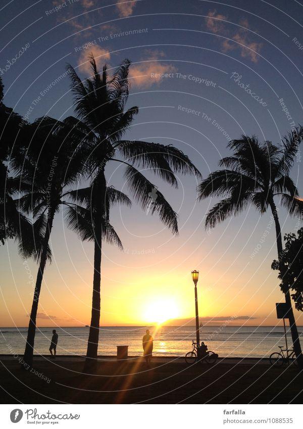 When the sun goes down... Himmel Natur Ferien & Urlaub & Reisen Pflanze Wasser Sommer Sonne Meer ruhig Gefühle Küste Glück Zeit Sand Horizont Zufriedenheit
