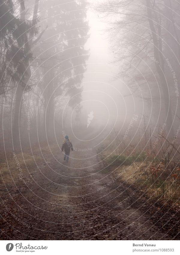homerun schön Kind Rücken Natur Wetter Nebel Regen Baum Wald Verkehr Holz rennen laufen Perspektive Fußweg trüb Dunst Spaziergang verträumt Farbfoto