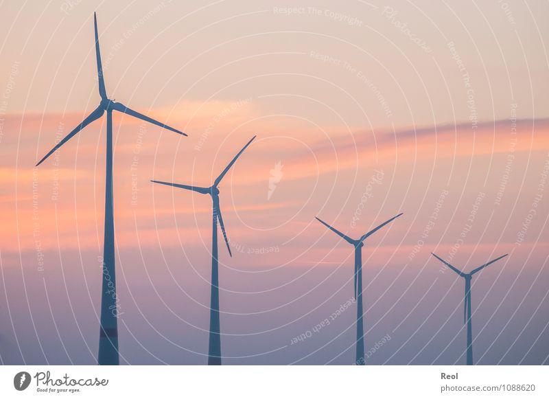 Windkraftanlagensortierung Luft Himmel Wolken Sonne Sonnenaufgang Sonnenuntergang Sonnenlicht Schönes Wetter Windrad orange rot Klimawandel sortieren 4 Abstieg