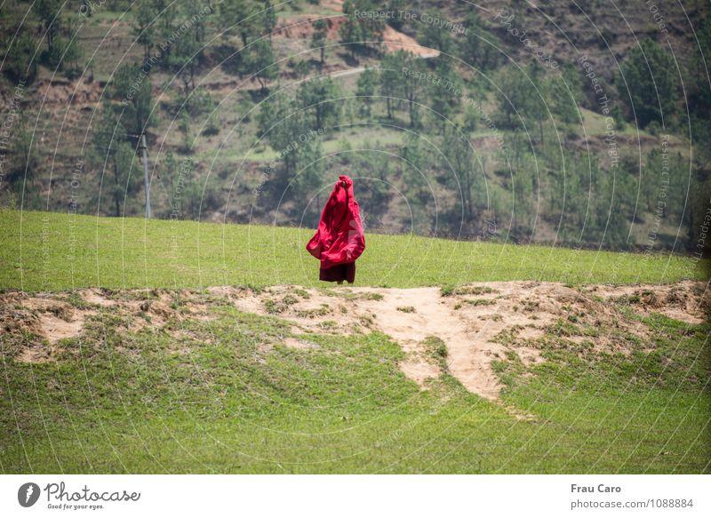 Mönch im Wind Mensch Natur Mann grün Baum rot Landschaft Erwachsene Wiese Gras Frühling gehen maskulin Feld Erde