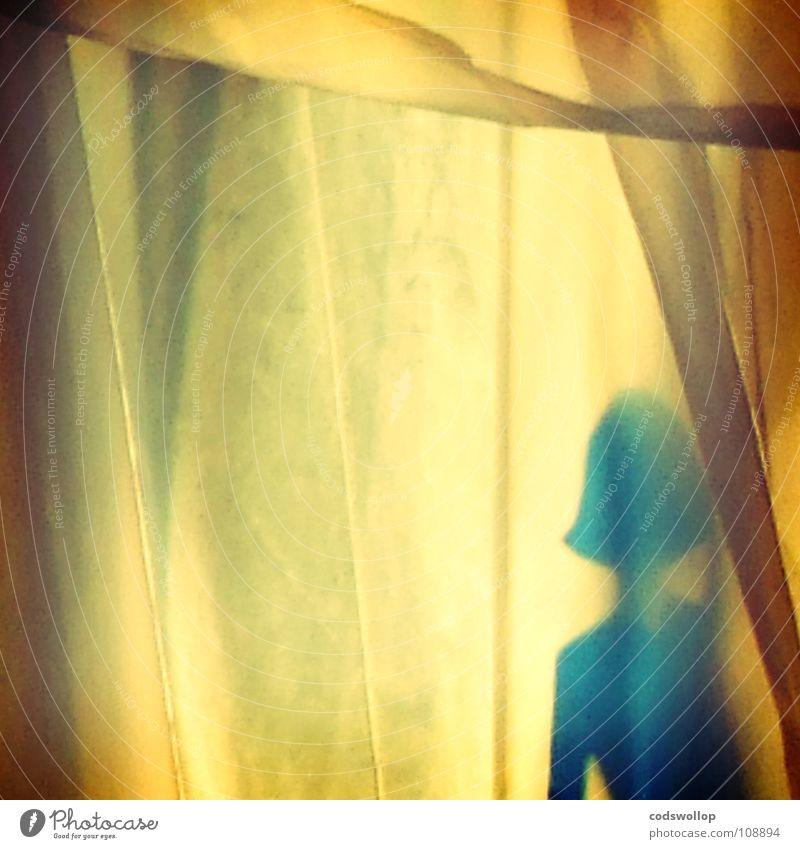 bleubelle träumen Traumfrau Haare & Frisuren Silhouette Frau Fußgänger Sommer Schlafzimmer obskur dreams backlit von hinten beleuchtet Sonne sunlight