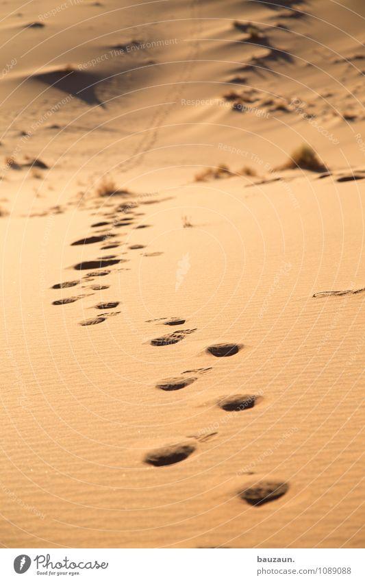 weg. Natur Ferien & Urlaub & Reisen Sommer Landschaft Ferne Wärme Bewegung Gesundheit Freiheit gehen Sand glänzend Erde Kraft Tourismus Erfolg