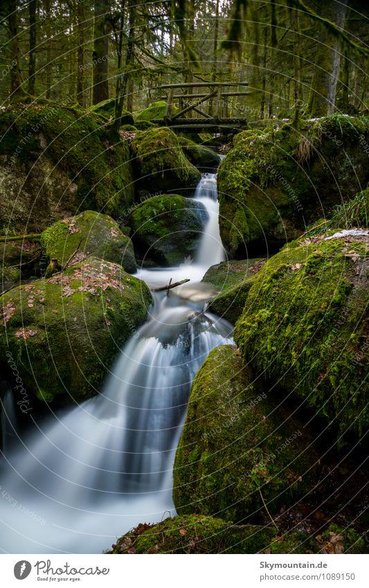 Bridge over troubled water Natur Ferien & Urlaub & Reisen Pflanze grün Wasser Sommer Landschaft Winter Ferne Wald Umwelt Berge u. Gebirge Gesundheit Felsen