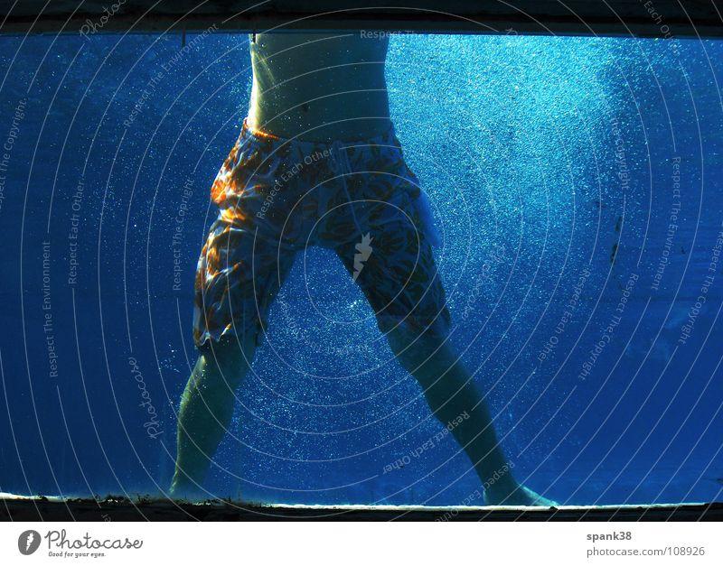 auftauchen Schwimmbad Fenster springen Freude Wasser blau aufwärts Blubbern