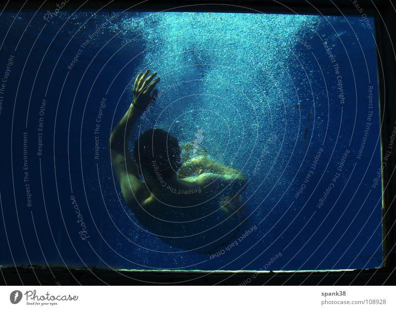 freigelassen Schweben tauchen Schwimmbad Knall Sommer Energiewirtschaft Wasser blau Blubbern