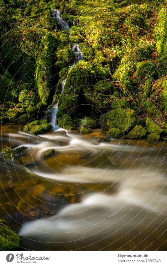 Grobbach bei Geroldsau Wellness Leben harmonisch Wohlgefühl Zufriedenheit Sinnesorgane Erholung ruhig Meditation Ferien & Urlaub & Reisen Ausflug Abenteuer