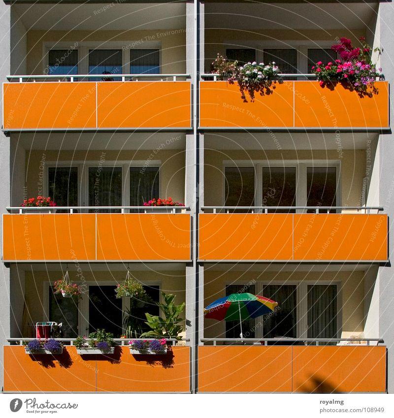 Sommer [07] vorm Balkon Blume Wärme orange Deutschland Physik Blühend Sonnenschirm Gesetze und Verordnungen Plattenbau Spießer Blumenkasten Mietrecht