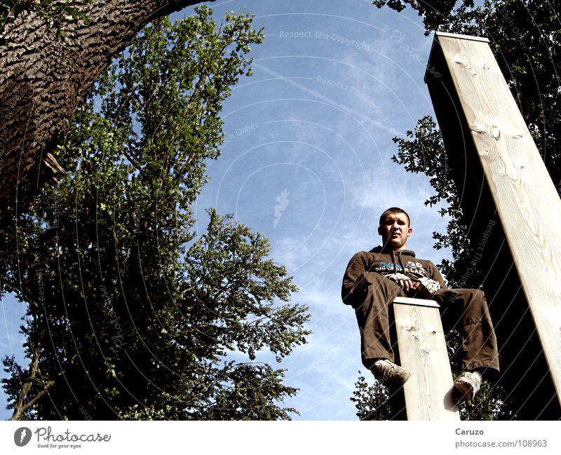 Peter? Jugendliche blau schön Baum Blatt oben Holz braun sitzen warten hoch Pause unten Baumstamm Langeweile Frankfurt am Main