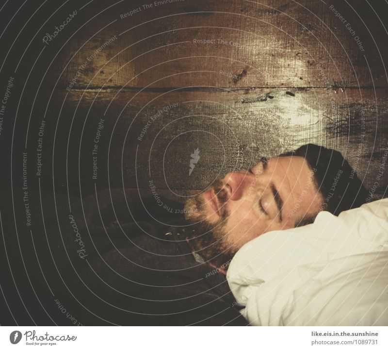 winterschlaf maskulin Mann Erwachsene Leben 30-45 Jahre genießen schlafen natürlich träumen Dreitagebart Bart Müdigkeit Holzwand Kissen Bett Bettwäsche liegen