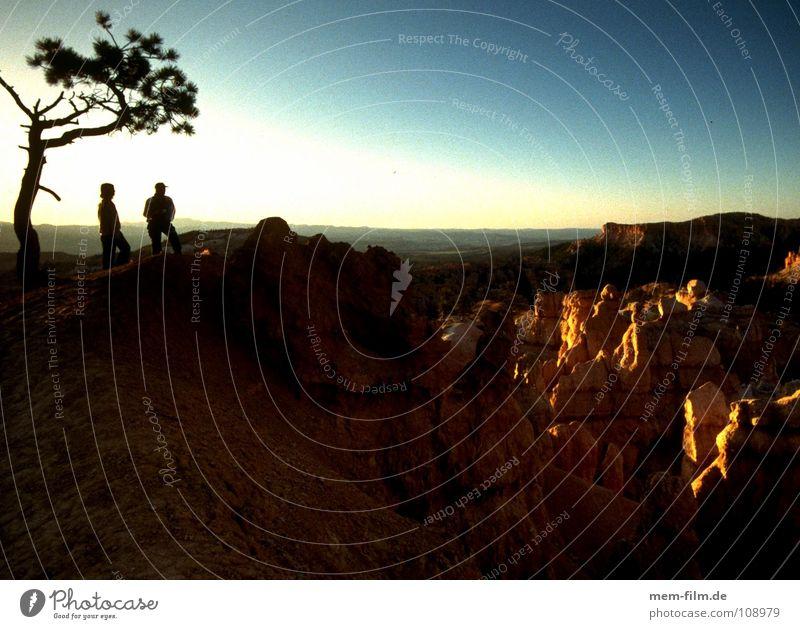 tief im western Himmel Baum Wolken USA Wüste dünn Ast Abenddämmerung Schlucht Cowboy Nationalpark Western Wildnis Zigarettenmarke Naturschutzgebiet Sandstein