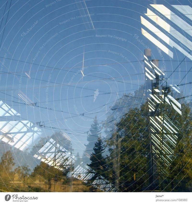 where is my mind? grün Licht Reflexion & Spiegelung Glasscheibe Fenster diagonal schwarz Baum Himmel Herbst Dresden graphisch Quadrat schön Architektur blau