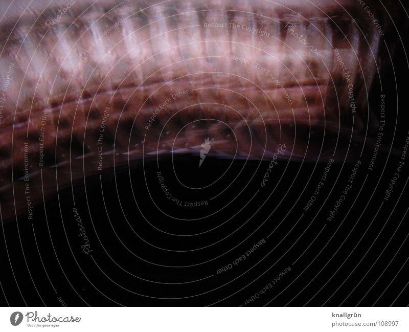 Waveman Mann Gesicht schwarz Farbe Bewegung Wellen rosa Bart Gesichtsfarbe