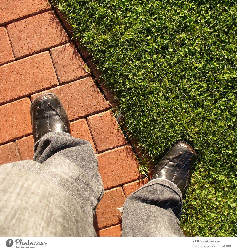 Wartet auf das 100. Mensch grün rot Wiese Gras Garten Stein Fuß Wege & Pfade Schuhe Beine warten Ecke Rasen stehen Hose