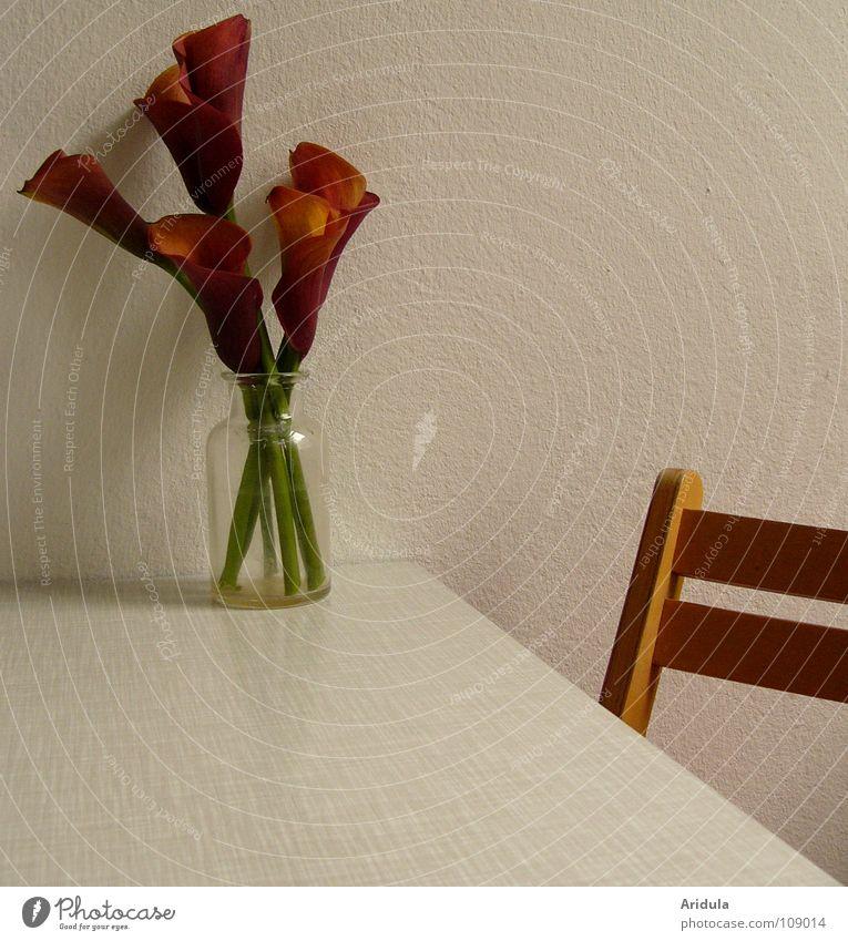Tischminimalismus Küche Blume Lilien weiß rot grün kalt Holz Vase Wand sehr wenige leer Strukturen & Formen Haus Wohnung Raum Möbel Glas Stuhl Häusliches Leben