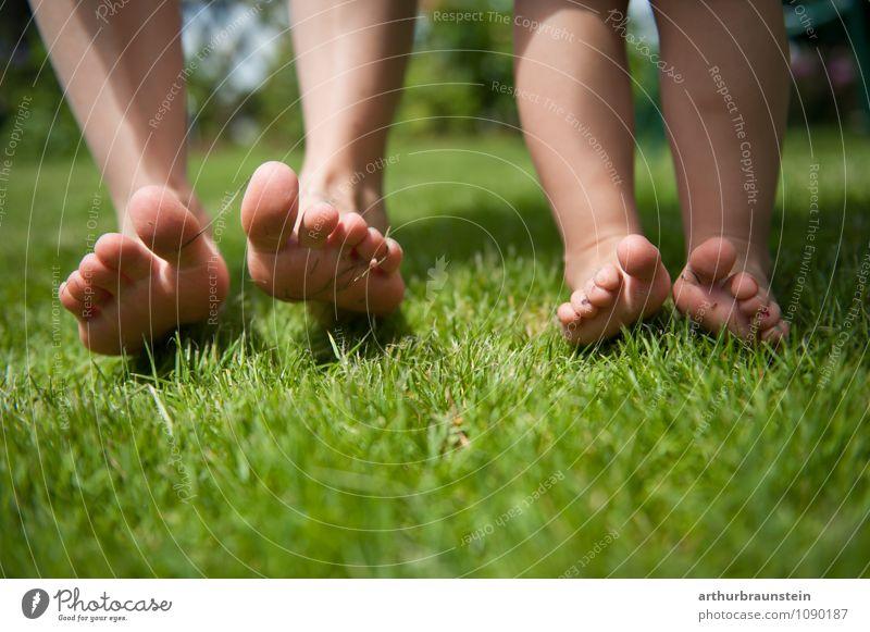 Füße barfuß in der Wiese Mensch Kind Natur Jugendliche Sommer Sonne Junge Frau Umwelt Erwachsene feminin Gras Frühling Glück Gesundheit Freiheit