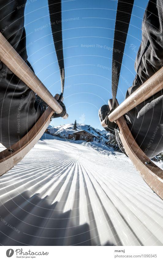 Gegen diese Hitze Ferien & Urlaub & Reisen Winter Bewegung Schnee Sport Beine Freiheit Tourismus Freizeit & Hobby Aktion Geschwindigkeit Ausflug Abenteuer Alpen