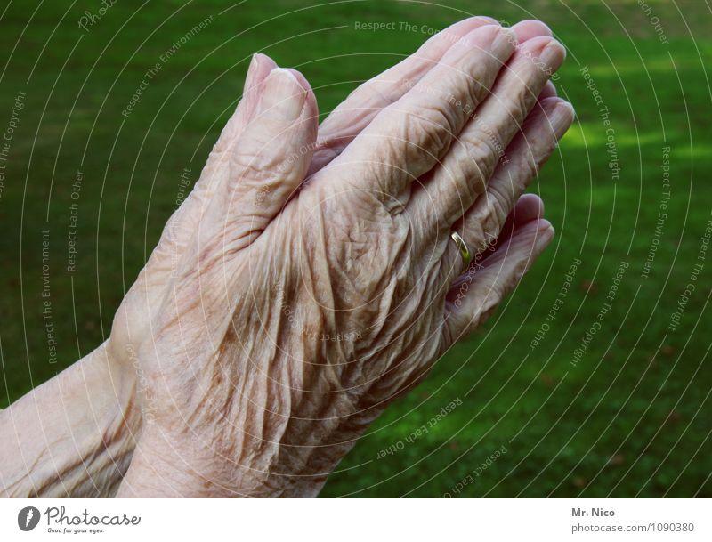 Urbi et orbi Körperpflege Haut feminin Großmutter Senior Arme Hand Finger 60 und älter Umwelt Gebet Gefühle Hautfalten geduldig Weisheit Sorge Trauer Einsamkeit