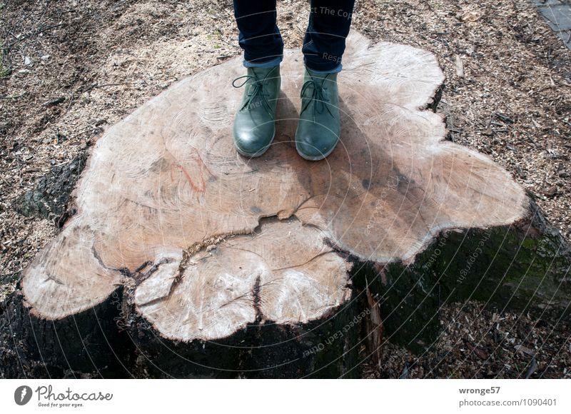 Holztritt feminin Frau Erwachsene Beine Fuß 1 Mensch Baum Baumstumpf Schuhe Stiefel Halbstiefel stehen alt trist braun grün Ärger Baumscheibe abgesägt Sockel