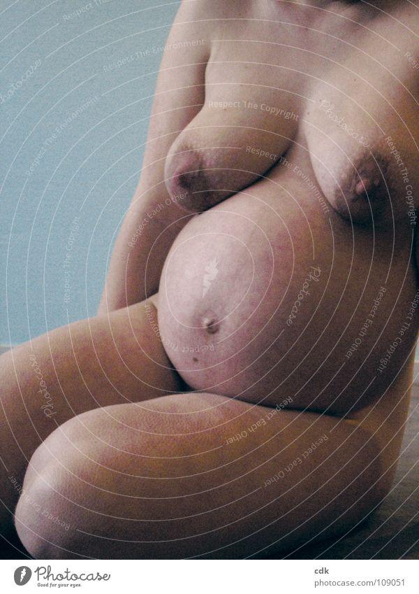 schwanger I Frau nackt feminin Babybauch Körperhaltung mehrere Entwicklung Zeit Wachstum entstehen Zusammensein Embryo Mutter rund schön Ausdauer Reifezeit