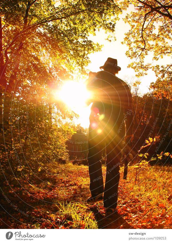 der sonne entgegen... I Mensch Jugendliche schön Sonne Freude Blatt Farbe dunkel Herbst Wand Graffiti Spielen Gefühle grau Mauer Stil