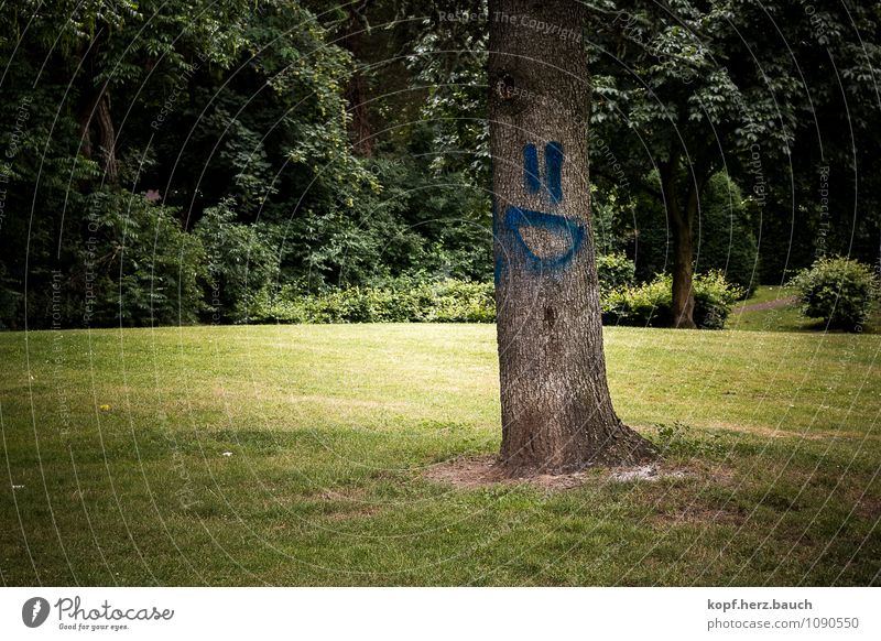 Baum mit Humor grün Wald Graffiti lustig Glück lachen Lebensfreude Zeichen positiv Optimismus Frühlingsgefühle April Smiley sympathisch