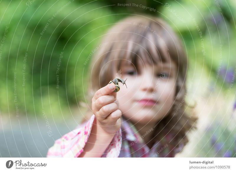 Kind betrachtet Schnecke Sommer Garten Mensch feminin 1 3-8 Jahre Kindheit Natur Tier beobachten entdecken Konzentration ansehen forschen zerbrechlich lernen