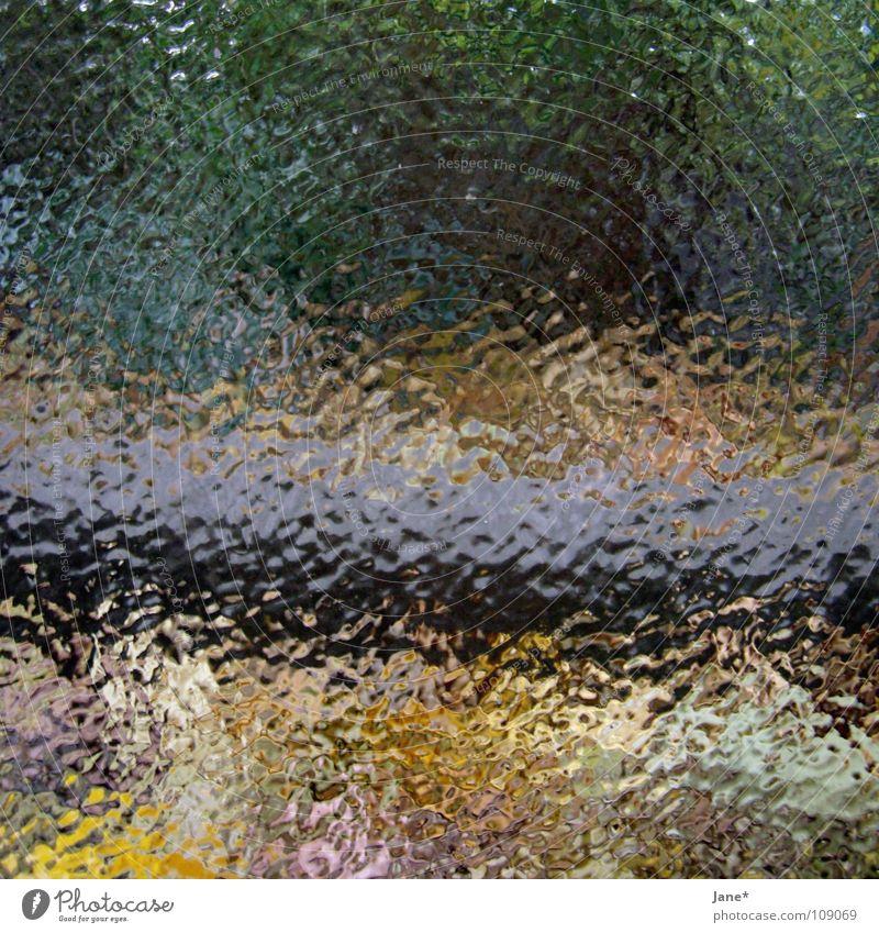 can`t see clear grün gelb horizontal schwarz Baum Blatt Herbst Dresden Quadrat Sehnsucht träumen abstrakt schön Detailaufnahme Gefühle blau blue Farbe colours
