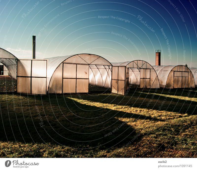 Treibhauseffekt Landwirtschaft Forstwirtschaft Handel Unternehmen Wolkenloser Himmel Schönes Wetter Gras Haus Gebäude Gewächshaus Gärtnerei hell Schornstein
