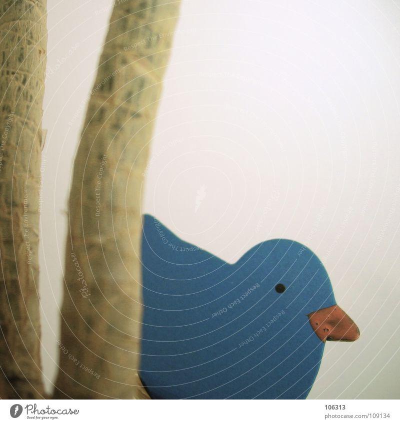 EI, WER BIST DU DENN? blau Pflanze Blume Spielen Holz klein Vogel Wildtier verrückt gefährlich süß Sträucher Coolness bedrohlich Dinge Kitsch