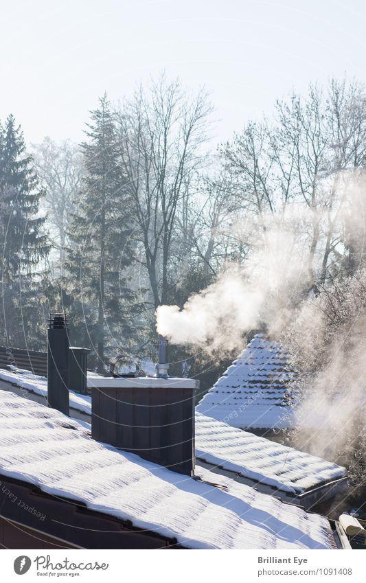 Schornstein in der Morgensonne Leben Winter Umwelt Abgas Rauch Dach Energie frieren heizen Konsum kalt Rauchen Heizung Erdöl Wärme Jahreszeiten Himmel oben