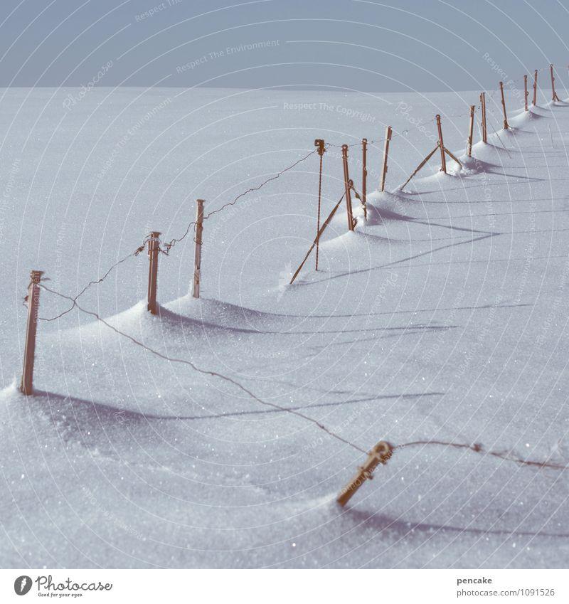 draht nach oben Natur Landschaft Winter Leben Schnee Zeit Linie Eis Feld authentisch Urelemente Zeichen Hoffnung Frost Ziel Sehnsucht