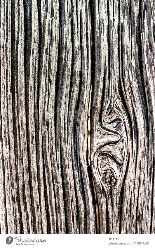 Eigenwillig Holzbrett Astloch Holzwand Linie Jahresringe alt außergewöhnlich dunkel authentisch einfach einzigartig natürlich braun Ausdauer standhaft