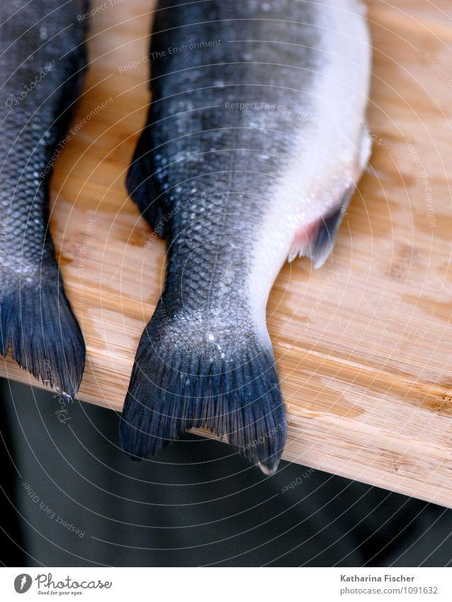 #1091632 Lebensmittel Fisch Meeresfrüchte Ernährung Mittagessen Abendessen Sushi Italienische Küche Tier Holz blau braun grau schwarz weiß Forelle Flosse