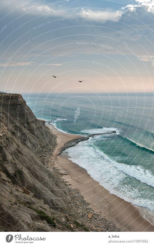 free Himmel Natur Ferien & Urlaub & Reisen Wasser Sommer Meer Landschaft Wolken Tier Strand Ferne Umwelt Küste Vogel Sand Felsen