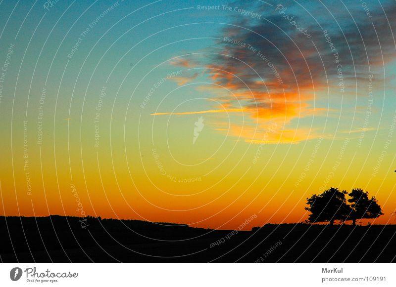 Sonnenuntergang mit Bäumen Himmel Wolken Ferne Horizont Unendlichkeit Abenddämmerung Farbenspiel