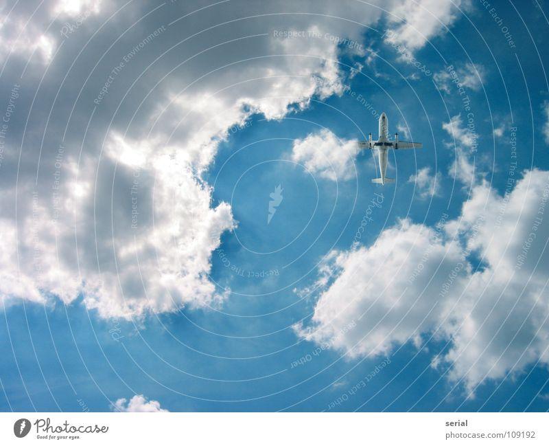 LuckyShot Flugzeug Wolken Propellerflugzeug Beginn Geschwindigkeit klein Luftverkehr Dienstleistungsgewerbe Industrie Himmel Lichtstrahl Güterverkehr & Logistik