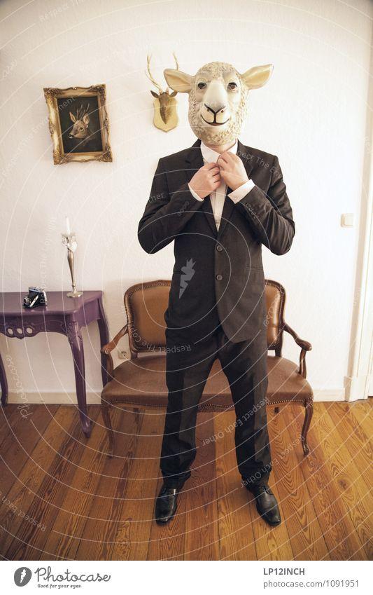 SCHArF. XII Büroarbeit Dienstleistungsgewerbe Börse Business Karriere Erfolg Feierabend maskulin Mann Erwachsene 1 Mensch Veranstaltung Anzug Schaf
