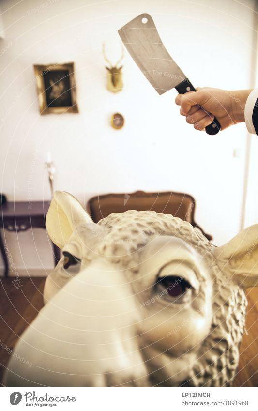 SCHÄrFsten. XV Party Hand Schaf 1 Tier Jagd kämpfen Aggression bedrohlich retro verrückt achtsam Wachsamkeit Appetit & Hunger Angst Entsetzen Todesangst
