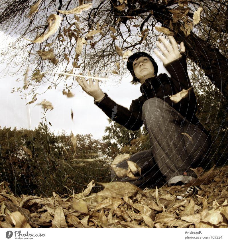 Herbstspaziergang Frau Natur Jugendliche Baum Freude Blatt Wald Spielen Park Spaziergang werfen Herbstlaub Oktober Junge Frau