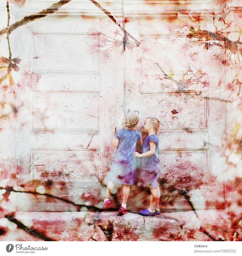 Frühlingskinder feminin Kind Mädchen Geschwister Schwester Kindheit 2 Mensch 3-8 Jahre Schönes Wetter Blüte beobachten Beratung entdecken Lächeln Blick Spielen