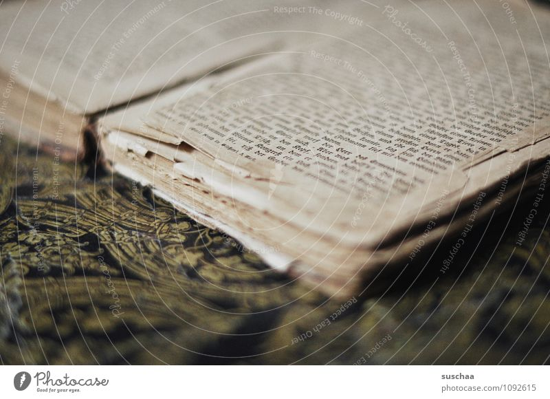 vergänglich Bildung Papier Schriftzeichen alt Verfall Vergänglichkeit Wissen Buchseite Text Gedeckte Farben Innenaufnahme Detailaufnahme Menschenleer