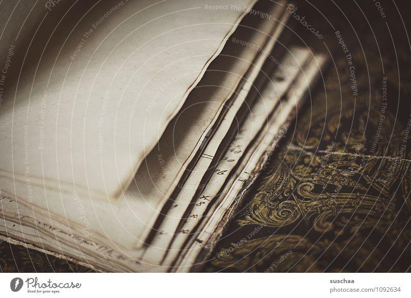 seitenweise ... Papier alt retro Buchseite Blätter Schriftstück leer Gedeckte Farben Innenaufnahme Detailaufnahme Menschenleer Textfreiraum links