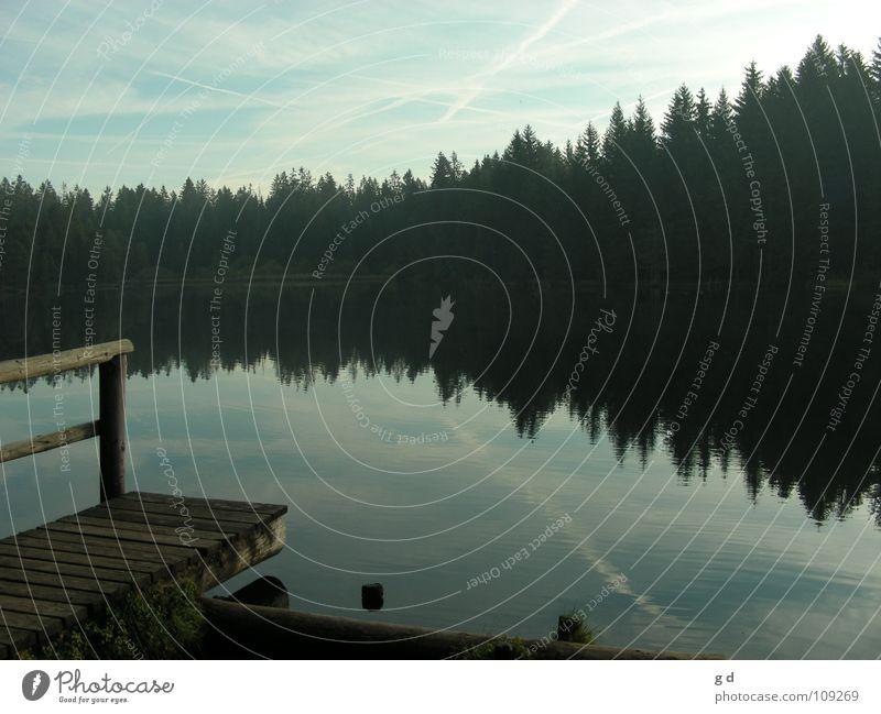 Etang de Gruère – Water Reflections I Wasser Wald Herbst Holz See harmonisch