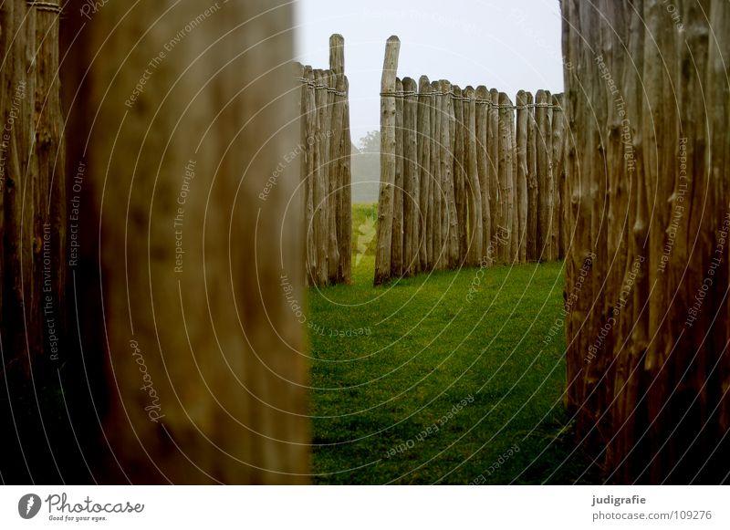 600 | Warten auf Licht Natur Farbe Wiese Holz Mauer Wege & Pfade Nebel Pause Jahreszeiten Bauwerk historisch Zaun Baumstamm Pfosten Observatorium