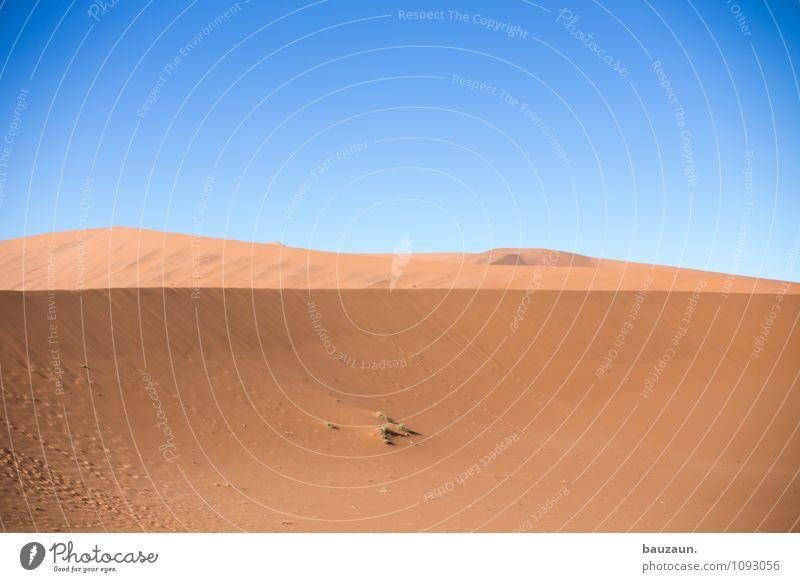 sand. Ferien & Urlaub & Reisen Tourismus Abenteuer Ferne Freiheit Umwelt Natur Landschaft Urelemente Erde Sand Himmel Wolkenloser Himmel Sonne Sommer Klima