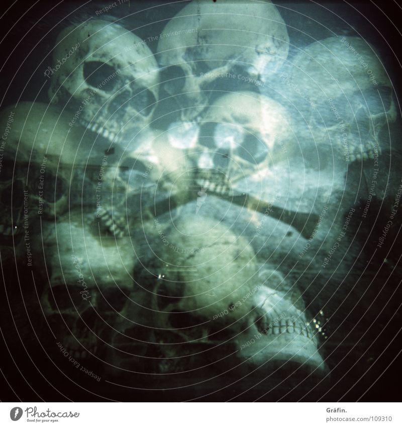Dungeon Kopf Zähne Vergänglichkeit gruselig obskur Geister u. Gespenster Fensterscheibe Halloween Schädel Schaufenster Holga Cross Processing St. Pauli