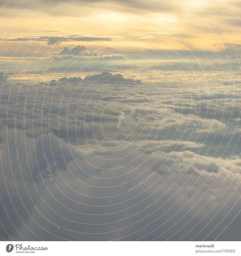 Cloud number 9 Himmel ruhig Wolken Einsamkeit Ferne Landschaft fliegen Luftverkehr weich Sehnsucht außergewöhnlich himmlisch schlechtes Wetter fluffig