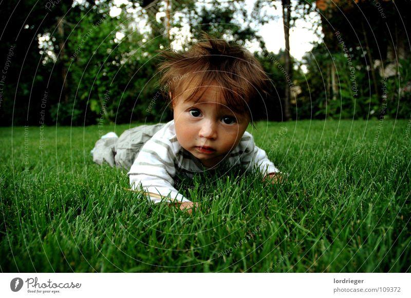 sandro elias rieger Kind Kleinkind Wiese grün braun Tier Sorge Frieden Gesicht Auge Mund Ohr weis Natur Garten Haare & Frisuren obhut Kindererziehung