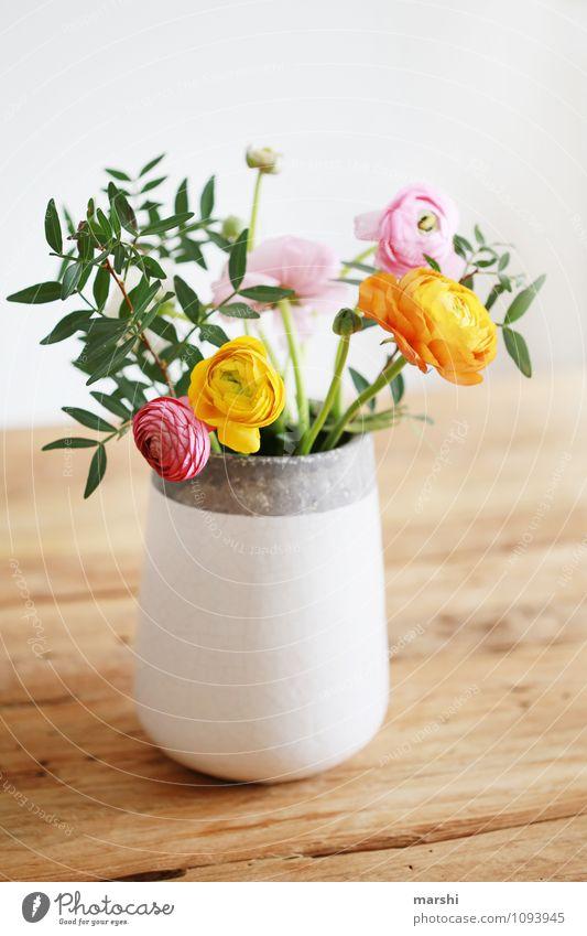 Lieblingsblumen Natur Pflanze Frühling Blume Blüte Grünpflanze Topfpflanze mehrfarbig gelb orange rosa Stimmung Vase Dekoration & Verzierung Blühend