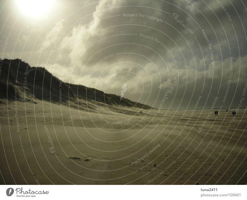 Sandsturm Teil 1 Strand Sturm Meer Küste Wolken Gegenlicht Leidenschaft Himmel Erde Wind Stranddüne Berge u. Gebirge Wasser Nordsee Spaziergang Sonne